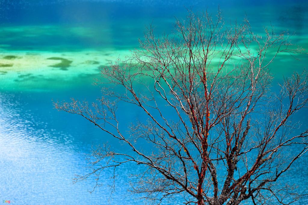 Hồ Trường Hải có hình lưỡi liềm, là hồ lớn nhất và sâu nhất khu thắng cảnh này, với độ sâu tới 103 m và dài 7,5 km. Do bị ngược ánh sáng mặt trời vào buổi chiều, hồ hiện lên qua ảnh bị nhạt màu đi khá nhiều. Phía xa là dãy núi tuyết trắng tạo nên khung cảnh đa sắc màu.