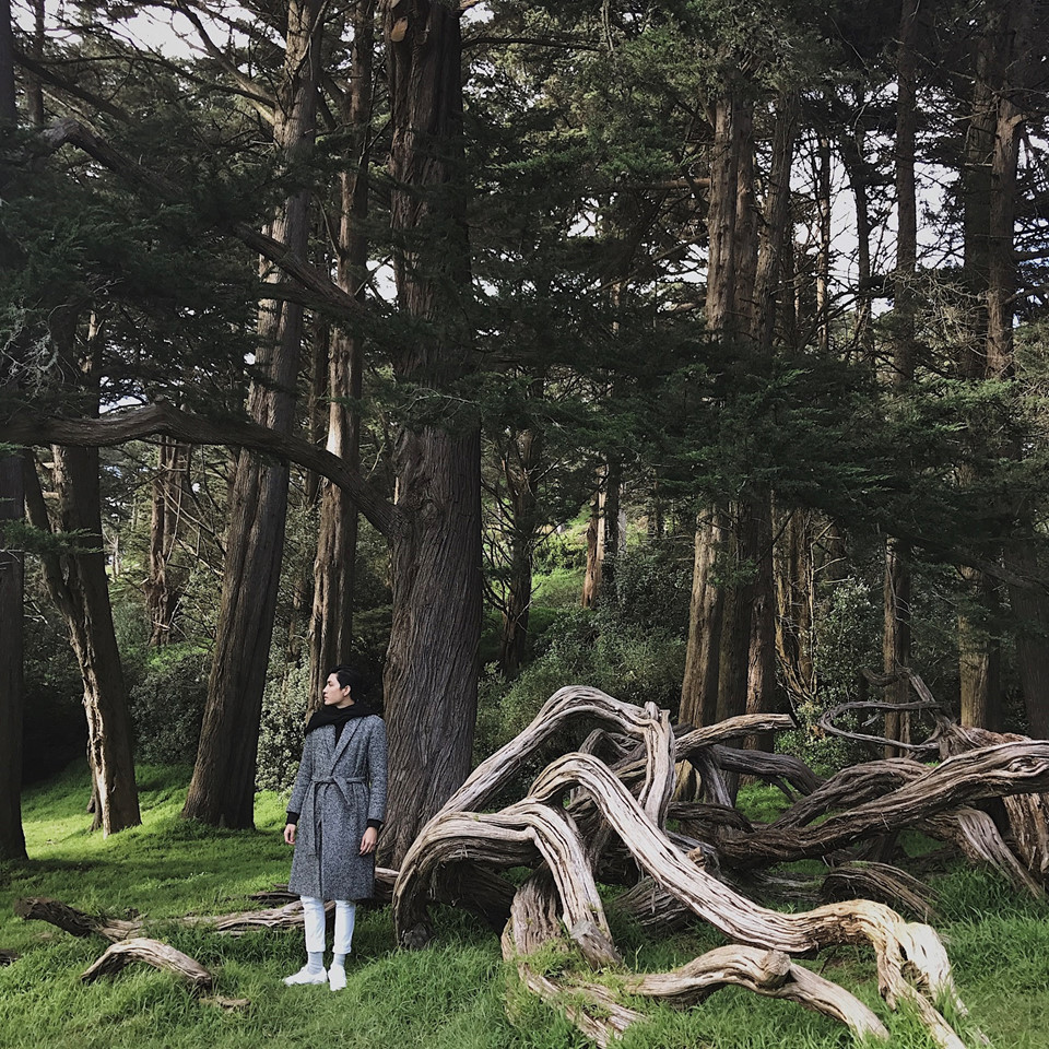 Golden Gate Park: Công viên giống như một khu rừng xanh trong những bộ phim Hollywood. Đi bộ giữa một công viên xanh vào mỗi buổi sáng để tinh thần luôn thoải mái cũng là một trải nghiệm tuyệt vời.