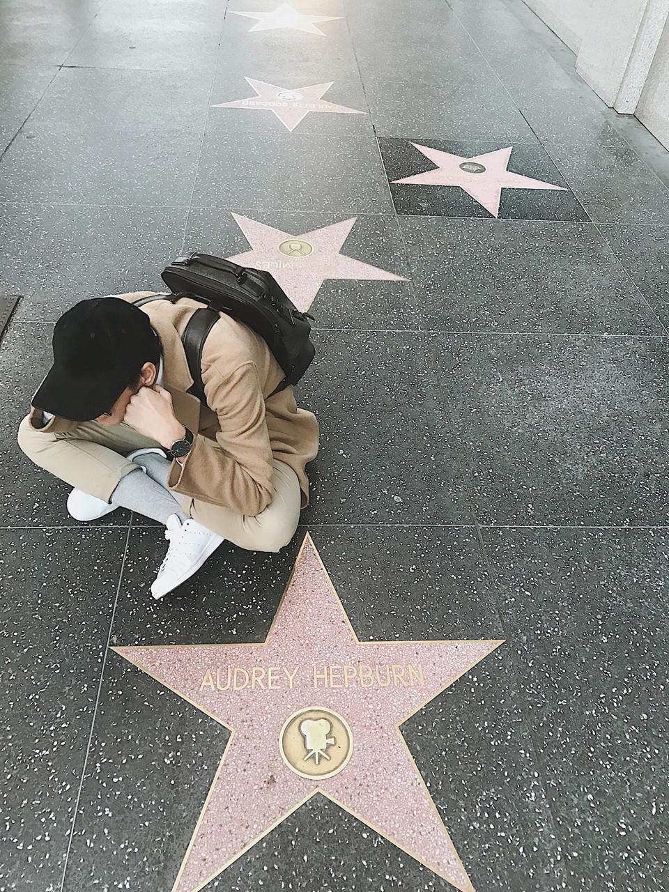 Đại lộ Danh vọng: Đại lộ Danh vọng không còn là cái tên xa lạ với nhiều người. Chỉ là một lề đường dọc đại lộ Hollywood và phố Vine ở Hollywood, California, Mỹ nhưng những điều nó mang lại cho bạn sẽ thú vị hơn bạn nghĩ. Còn gì tuyệt vời hơn khi rảo bước dọc con đường và check-in cùng những ngôi sao nổi tiếng?