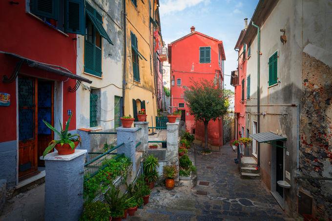 """""""Italy là một đất nước tuyệt diệu. Du khách thường tìm đến khu vực bên bờ biển mà quên đi vẻ đẹp bị lãng quên ở phía sau, nơi vắng bóng người. Tôi quyết định chụp bộ ảnh này vào thời điểm mùa xuân hè, khi mà thời tiết ấm áp, ánh sáng len lỏi vào tận nơi sâu nhất của con hẻm tối, làm rực lên những góc khuất bình yên nhất. Đôi khi, bạn còn có thể thấy những chú mèo dễ thương đang phơi mình"""", nhiếp ảnh gia cho biết."""