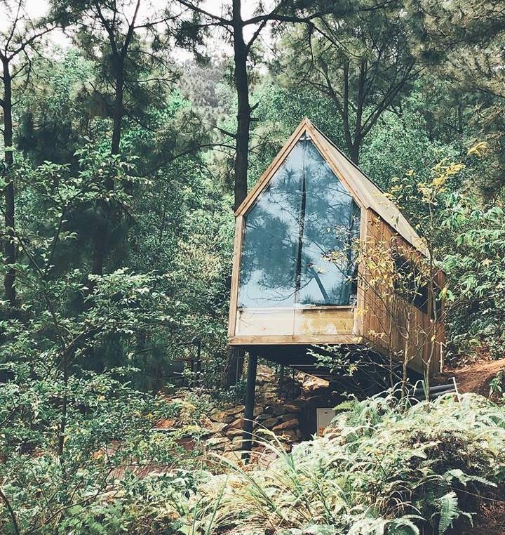 """Nhà Trong Rừng là một tổ hợp homestay có không gian mở hoà hợp với núi rừng thiên nhiên. Điểm đặc biệt ở đây là rừng thông, mỗi căn nhà gỗ hay villa đều lấy cảm hứng từ cây, quả thông, kể cả view trong các bức ảnh cũng đều xuất hiện cây thông. Đây là một địa điểm thích hợp cho các cặp đôi muốn thư giãn hoặc nhóm bạn muốn thay đổi không khí, """"đi trốn"""" mà không có thời gian."""