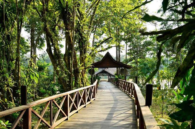 Sukau, Sabah, Malaysia  Nằm trong rừng mưa nhiệt đới ở bang Sabah, đảo Borneo, Sukau nằm giữa môi trường tự nhiên có nhiều loài vật lạ như đười ươi hoang, voi pygmy, khỉ vòi... Khu nghỉ dưỡng được xây dựng khéo léo nằm ẩn mình trong rừng, rất thích hợp với người yêu thiên nhiên hoang dã.