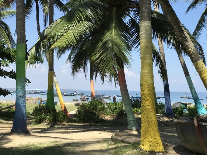 Xã đảo Tam Hải với một mặt giáp sông Trường Giang, 3 mặt giáp biển như một ốc đảo bình yên. Nơi đây còn được gọi với cái tên là đảo dừa vì nổi tiếng với bạt ngàn những hàng dừa xanh mướt mát.