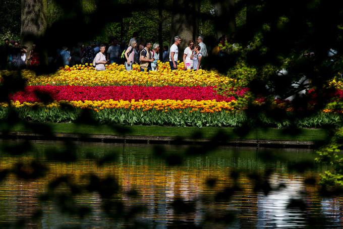 Du khách có thể tham quan vườn hoa được cho là lớn nhất thế giới này từ 8h đến 19h30 hàng ngày dịp lễ hội hoa (quầy vé đóng cửa lúc 18h). Giá vé tham quan là 18 euro với một người lớn, 8 euro với một trẻ em.
