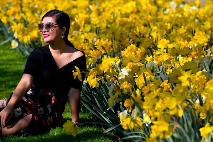 Một du khách nữ say sưa tạo dáng chụp hình bên thảm hoa thủy tiên vàng ở Keukenhof.
