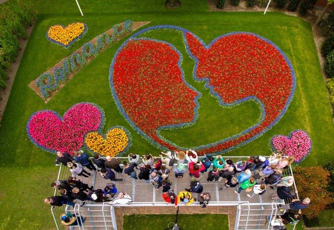 """Thảm hoa kết hình lãng mạn """"Roman in Flowers"""" làm từ 50.000 cây tulip và lan dạ hương thu hút nhiều du khách tới chụp hình. Ảnh chụp vào những ngày cuối tháng 4 khi hoa đã nở rực rỡ khắp Keukenhof."""