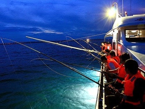 Câu mực đêm Thông thường, tàu câu mực sẽ xuất phát lúc 5h chiều tại làng chài, rồi chạy 30 phút ra biển. Tàu sẽ dừng lại ở các điểm có nhiều mực để du khách trải nghiệm câu. Nếu may mắn câu được mực, khách có thể dùng để nấu cháo hoặc nướng rồi thưởng thức ngay trên thuyền. Hành trình của tour câu mực mất khoảng 4 tiếng. Một tour trọn gói gồm bữa tối, dụng cụ chuyên dụng… có giá khoảng 700.000 đồng mỗi người. Ảnh: Hoai Vu.