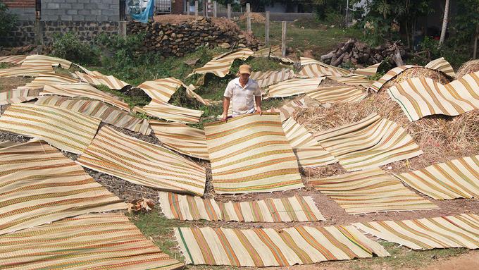 Tại làng Phú Tân, chiếu cói không chỉ phục vụ nhu cầu của người dân trong vùng mà còn tiêu thụ ra các tỉnh Tây Nguyên và Nam Trung Bộ. Thời tiết trong vùng khô nóng nên chiếu cói với nguyên liệu tự nhiên giúp giấc ngủ ngon hơn.