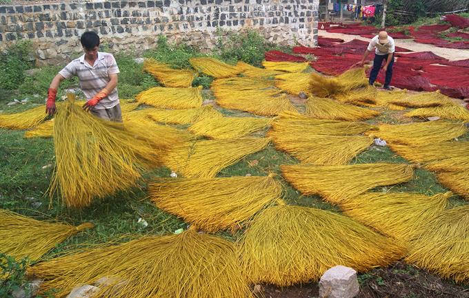 àng nghề dệt chiếu cói Phú Tân hiện có hơn 25 ha trồng cói sẵn có tại địa phương. Nhờ nguồn hàng ổn định, làng nghề nhiều năm nay vẫn phát triển mạnh, giúp giải quyết việc làm cho hơn 600 lao động trong vùng.