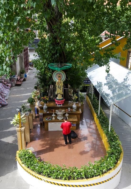 Ngoài sân chùa có một cây Bồ đề mang về từ Colombia. Cạnh cây là tượng Bồ Tát Quan Thế Âm được đúc năm 1958.