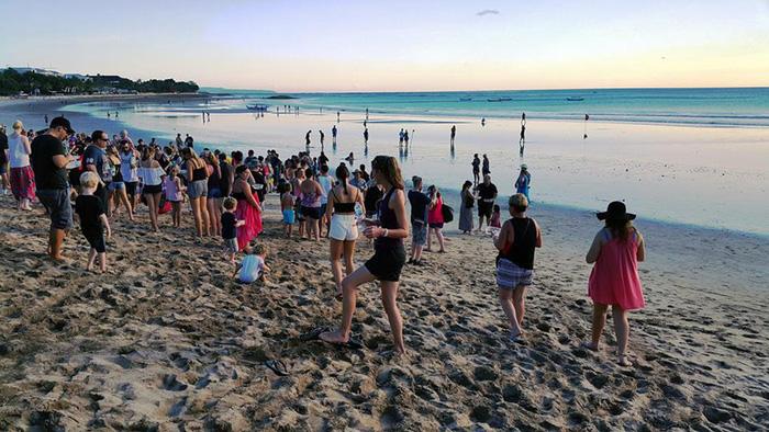 Du khách tham gia ngày hội thả rùa. Trẻ em được ưu tiên, các bé cầm trên tay những hộp nhựa đựng rùa con và cùng người lớn thả chúng xuống biển