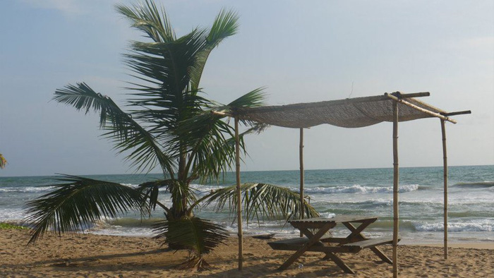 Bãi biển Bentota - nơi thả rùa và chỗ để du khách ngồi tận hưởng hạnh phúc sau khi các bé rùa con bơi đi