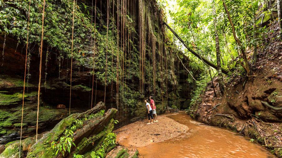 Tạo hóa quả thực rất ưu ái Brazil khi ban cho nơi đây cảnh quan rừng nhiệt đới xanh tươi cùng biển cát trắng mịn và những thị trấn hoang sơ đa sắc màu. Đây là quốc gia có độ đa dạng sinh học cao nhất thế giới, hơn hẳn những nơi khác.