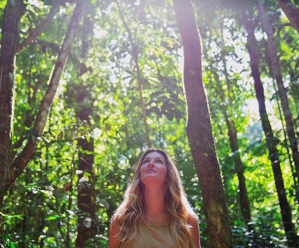 Siêu mẫu thế giới người Brazil Gisele Bündchen hoạt động rất tích cực trên mạng xã hội để kêu gọi chấm dứt nạn phá rừng. Cô gửi đi thông điệp nhấn mạnh vai trò quan trọng cân bằng tự nhiên của rừng Amazon và trách nhiệm bảo vệ là của toàn xã hội bởi cuộc sống loài người phụ thuộc lớn vào sự sống của thiên nhiên.