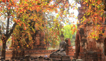 mot-ngay-thu-vi-o-co-do-ayutthaya-ivivu-3
