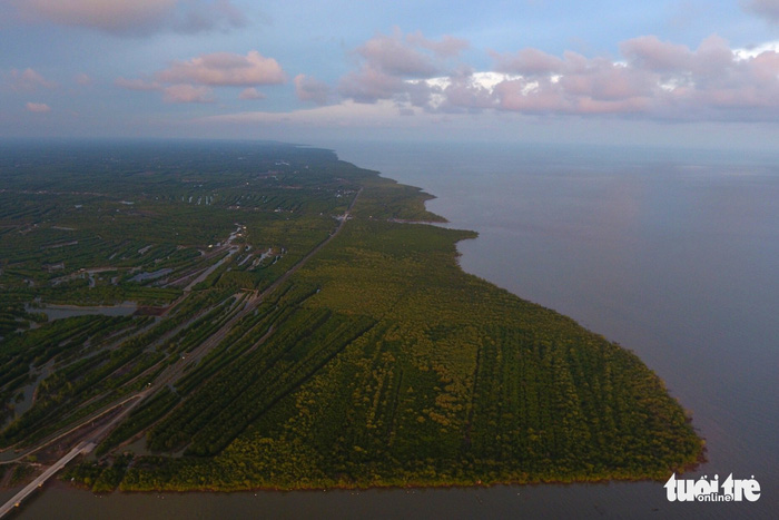 Khu dự trữ sinh quyển Mũi Cà Mau có những đặc trưng nổi bật là vùng ngập mặn lớn nhất Việt Nam và nổi tiếng trên thế giới về năng suất sinh học cao nhất trong các hệ sinh thái rừng tự nhiên - Ảnh: HỮU KHOA