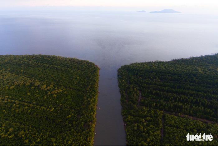 Khu dự trữ sinh quyển thế giới Mũi Cà Mau không chỉ đem lại nguồn lợi lớn về kinh tế mà còn tạo môi trường sinh thái trong lành, là điều kiện thuận lợi để phát triển du lịch sinh thái, tham quan và nghiên cứu khoa học - Ảnh: HỮU KHOA