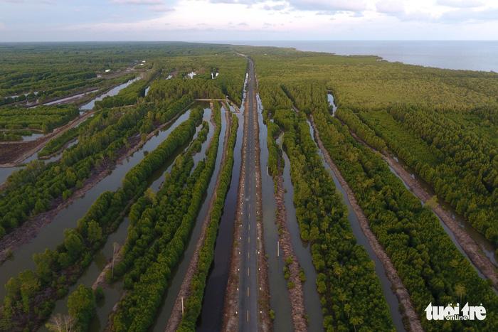 Đường Hồ Chí Minh xuyên rừng ngập mặn Cà Mau xuống điểm cuối của tổ quốc - Ảnh: HỮU KHOA