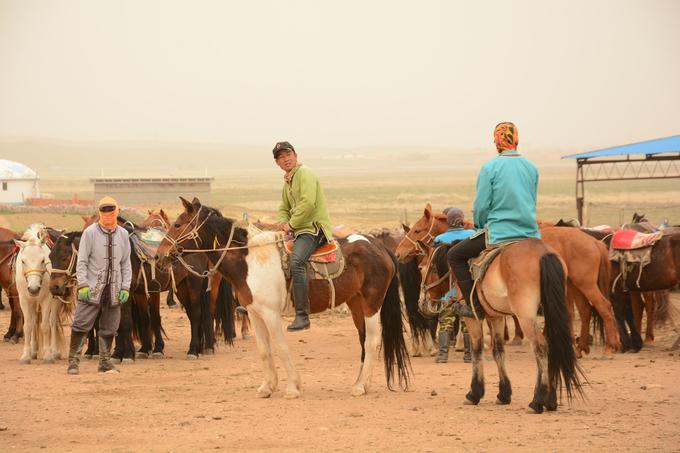 Sống trên thảo nguyên, người dân tộc Mông Cổ cưỡi ngựa rất điêu luyện. Đây cũng là trải nghiệm du khách không thể bỏ qua khi đến Nội Mông. Dịch vụ cho thuê ngựa cưỡi rất phát triển. Mỗi đàn hàng trăm con luôn có sẵn để phục vụ du khách.  Với giá thuê 380 - 880 tệ (1,3 - 3 triệu đồng) mỗi con, khách sẽ được trang bị mũ và kèm người dẫn ngựa. Ngựa ở đây đều huấn luyện để phục vụ du lịch nên khá hiền, đưa khách thong dong nhìn ngắm thảo nguyên. Nếu cưỡi lần đầu, bạn có thể sợ hãi khi chúng mới chỉ bước nhanh. Tuy nhiên chỉ sau khoảng nửa tiếng mọi việc sẽ quen dần và cảm thấy trải nghiệm thực sự thích thú.