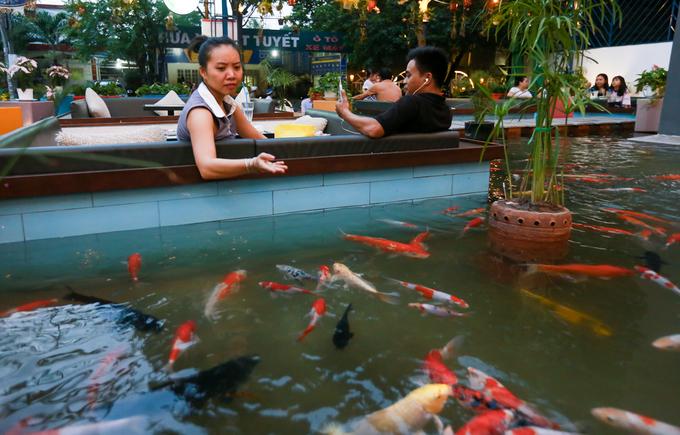 """Mỗi bàn chứa được 8 - 12 người, do số lượng bàn có hạn nên nhiều khách phải đặt trước từ nửa tiếng.  """"Mình may mắn vừa đến nơi thì có bàn ngay, ngồi giữa hồ nước cảm giác vừa mát mẻ, không gian riêng tư. Lâu lâu ngắm đàn cá bơi mình thấy tinh thần thoải mái hơn"""", Đặng Thị Thanh Quý (28 tuổi, quận 2) chia sẻ."""