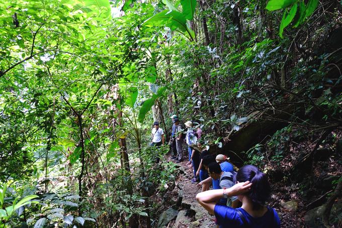 Hiện Vườn quốc gia Ba Vì mở thêm nhiều chặng trek ngắn phù hợp cho cả người nghiệp dư lẫn chuyên nghiệp. Trong đó có tuyến đi dễ kéo dài khoảng 2 tiếng bắt đầu từ Cốt 1.100 m hướng xuống Cốt 400 m.