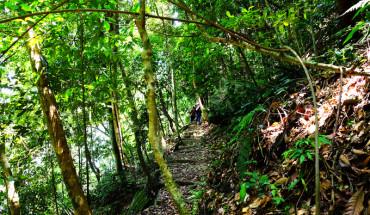 trekking-xuyen-rung-ba-vi-tren-cung-duong-moi-ivivu-6