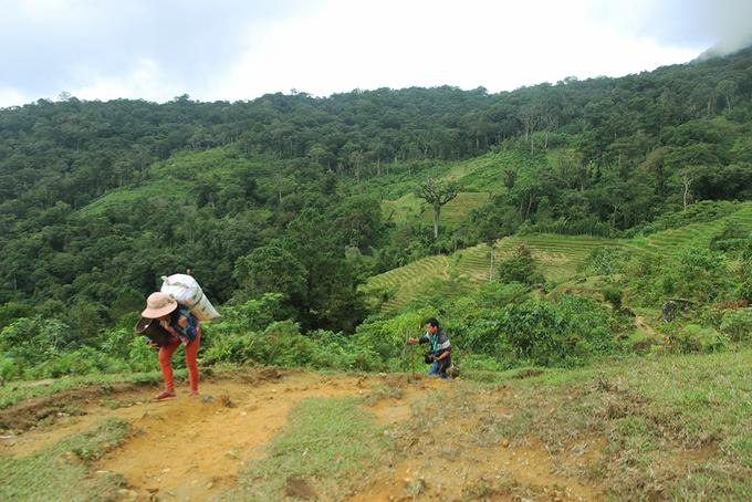 """Núi Ngọc Linh cách trung tâm huyện Nam Trà My hơn 10 km. Để khám phá ngọn núi này, du khách phải cuốc bộ, leo những dốc dựng đứng.  Chinh phục Ngọc Linh cần có người dân bản địa dẫn đường, đồng thời liên hệ trước để có chỗ nghỉ qua đêm. Đặc biệt, người trồng sâm không cho người lạ đến vườn sâm vì sợ mất trộm, do đó phải có người """"bảo lãnh"""" bạn mới đến được."""