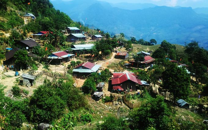Sau khoảng 3 tiếng đi bộ từ trung tâm xã Trà Linh khách đến Trại sâm giống của huyện Nam Trà My. Những người trồng sâm làm nhà, ăn ở giữa rừng bảo vệ chúng.