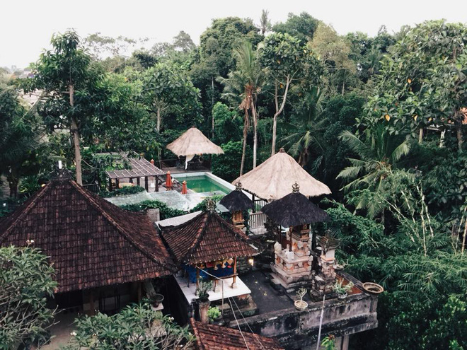 View từ phòng của Thảo Anh ở Ubud