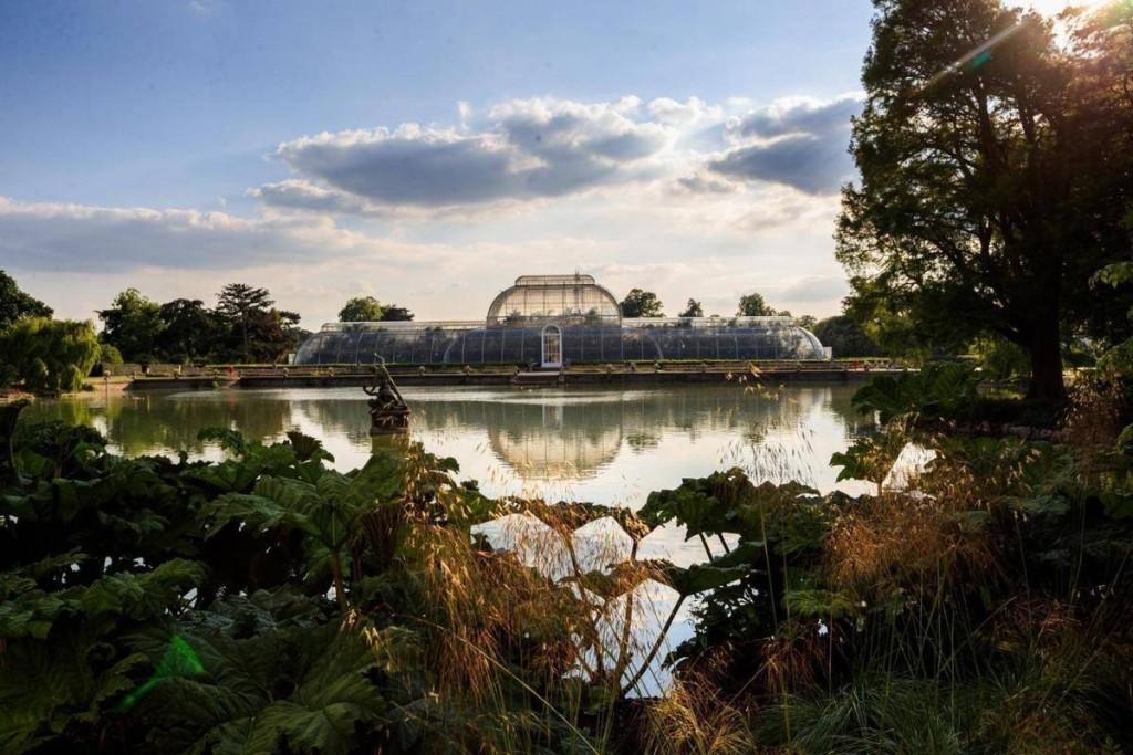 Cũng giống như các nhà kính thông thường khác, nhưng nếu bạn đứng từ phía bên kia hồ trước nhà kính The Palm chụp toàn cảnh, bức ảnh khiến người xem có cảm giác như đang ở miền quê thanh bình, lọt thỏm giữa thủ đô nước Anh.