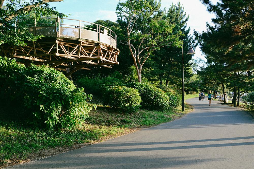Do địa điểm này cách khá xa trung tâm nên khách du lịch di chuyển khá bất tiện. Bạn có thể chọn các phương tiện như xe bus, tàu điện, tàu monorail hay thậm chí là đi xe đạp hoặc đi bộ từ ga Tamachi hoặc Toyosu.