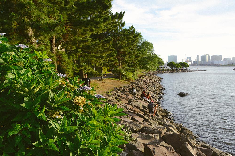 Bãi biển ở Odaiba cũng là một trong hai bãi biển trong nội đô Tokyo bên cạnh Kasai Rinkai Park ở Edogawa. Tuy nhiên, nơi này treo biển cấm bơi để bảo đảm an toàn.