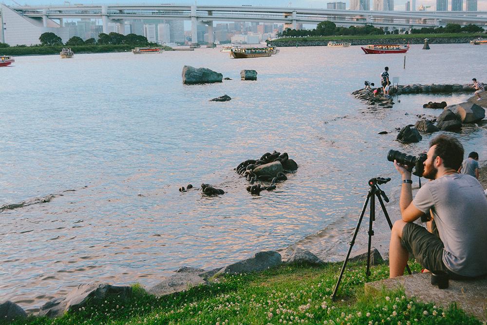 Odaiba được xây dựng từ năm 1850 với mục đích phòng vệ. Chính vì vậy mà hòn đảo được đặt tên là Odaiba, theo tiếng Nhật có nghĩa là 'nơi đặt đại bác'. Sau đó, Odaiba dần được phát triển thành một khu đô thị giải trí sầm uất bậc nhất Tokyo với nhiều hạng mục như trung tâm thương mại, đài truyền hình, khách sạn, tòa nhà công sở... Đây cũng sẽ là địa điểm tổ chức Thế vận hội Tokyo 2020.