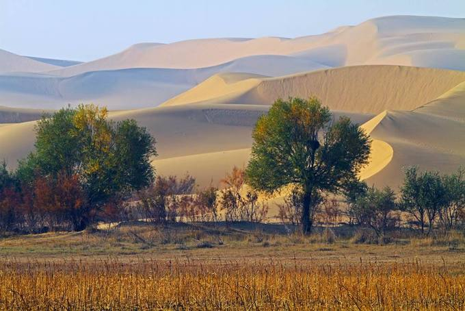 Bên cạnh màu xanh thảo nguyên, ở Nội Mông cũng tồn tại những sa mạc rộng lớn. Đây cũng là nơi du khách có thể trải nghiệm các hoạt động trên cát như phi thuyền bay, trượt cát, cưỡi lạc đà... Ảnh: Baidu.
