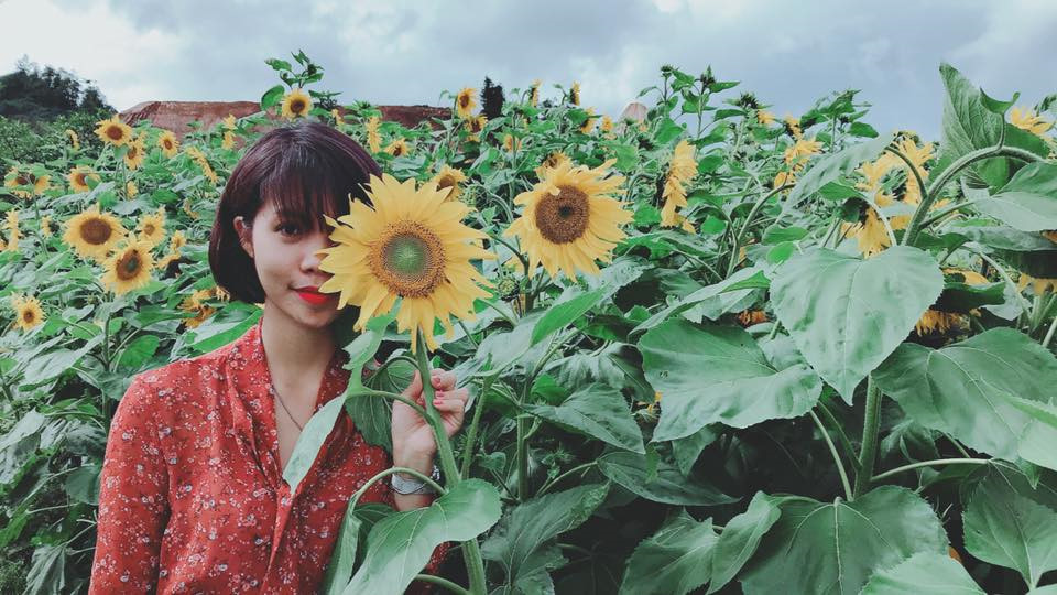 Đặc biệt, đồi hoa hướng dương ở chân núi Fansipan mới đưa vào sử dụng từ tháng 6 đã thu hút đông đảo các bạn trẻ tới check-in. Ảnh: Đỗ Hà My - Hằng Jo.