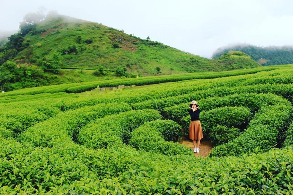 Đồi chè trái tim: Mộc Châu còn cuốn hút du khách với những đồi chè xanh mướt trong tiết xuân hay trơ trụi vào mùa đông nhưng vẫn quyến rũ đến lạ kỳ. Đặc biệt, đồi chè hình trái tim ở nơi đây biểu trưng cho sức sống và tình yêu, được bà con nông trường khéo léo tạo thành và trở thành điểm đến ấn tượng với du khách gần xa. Ảnh: @haipham_haipham , @_lyly____.