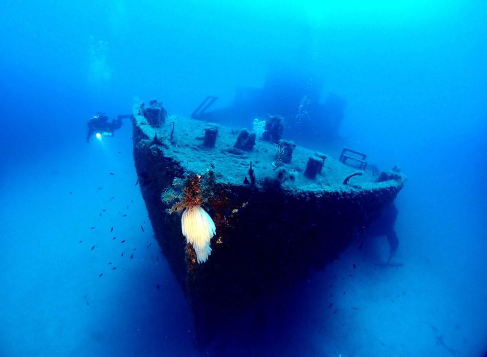 San Dimitri ở phía tây Gozo là điểm lặn thu hút nhất ở Malta. Bạn cũng có thể đến Ghasri phía bắc Gozo để ngắm nhìn những đàn cá ngựa màu sắc bơi trong nước. Nằm sâu khoảng 13 m dưới đáy biển là xác tàu HMS Maori và tàu Bristol Beaufighter. Hai tàu này đâm trúng kình ngư vào thời Thế chiến II và vẫn nằm đó cho đến bây giờ.