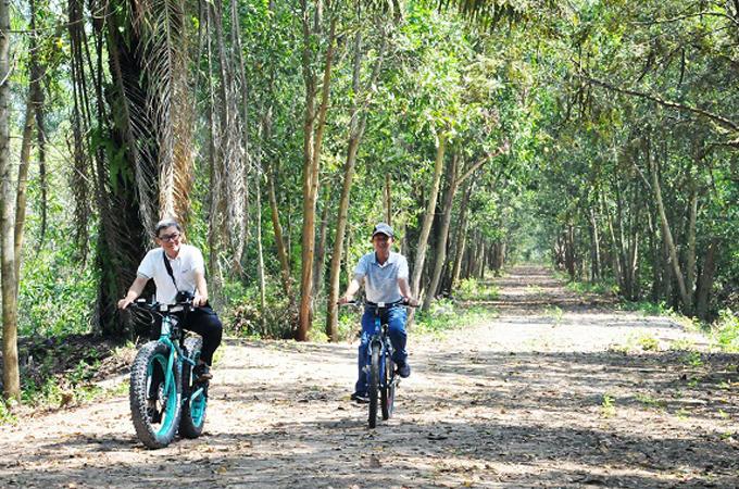 Đạp xe khoảng 8 km quanh rừng tràm gió.