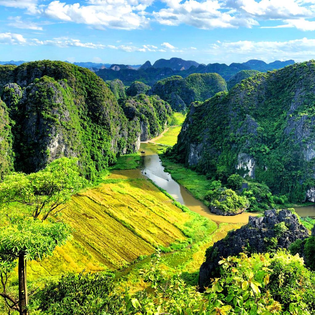 Hang Múa được xem là một trong những nơi đẹp nhất để thưởng thức cũng như chụp ảnh mùa vàng Tam Cốc. Ảnh: @ibedzl - @ashley_monter.