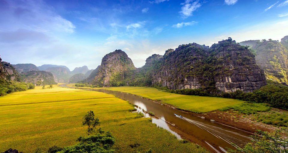 Khoảng thời gian vào hè từ cuối tháng 5 đến tháng 7 (mùa lúa chín) là thời điểm Tam Cốc tiếp đón nhiều du khách nhất. Đặc biệt, 2 tuần lễ cuối tháng 5 đầu tháng 6, cánh đồng lúa chín rộ, vàng rực cả một khoảng trời. Ảnh: Le Hong Ha.