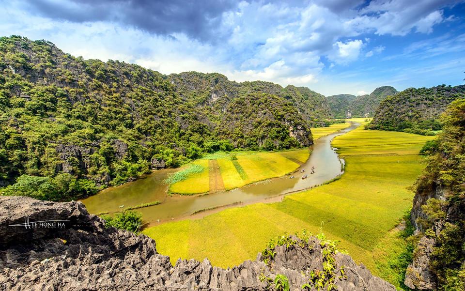 Dòng sông Ngô Đồng êm đềm uốn lượn giữa một bên cánh đồng lúa vàng một bên núi đá hoang sơ, kỳ vĩ tạo nên bức họa đồng quê thanh bình, lãng mạn. Đây cũng là tuyến đường thủy đưa du khách đến các hang động, di tích lịch sử trong khu danh thắng Tam Cốc - Bích Động. Ảnh: Le Hong Ha.