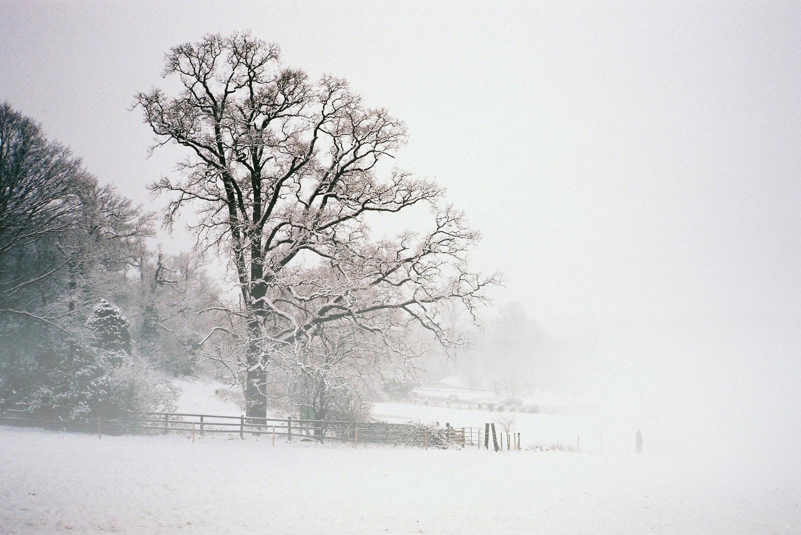 Mùa ở Anh: Mùa xuân cây cối bắt đầu mọc những chồi non khắp nơi, hoa thủy tiên nở vàng rực rỡ. Mùa hè du khách có thể ăn kem trên bãi biển, trải nghiệm cuộc sống ở những vùng nông thôn. Mùa thu, cây cối chuyển lá đỏ và mùa đông là thời điểm trượt tuyết.