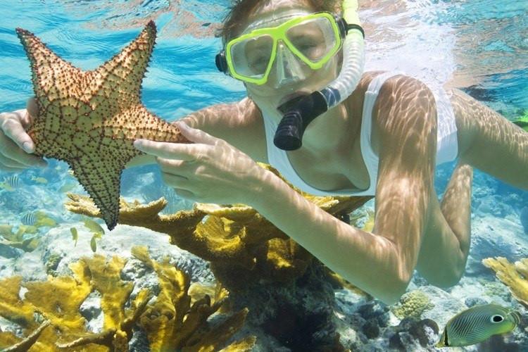 Đảo Hòn Mun sở hữu cảnh sắc nên thơ. Thời điểm lặn ngắm san hô đẹp nhất là vào khoảng tháng 7 đến tháng 9. Ở tầng nước khoảng 10 m, bạn sẽ thấy những đan cá lớn tung tăng bên rặng san hô rực rỡ. Hòn Mun có tới khoảng 2.000 loại san hô và 1.500 sinh vật biển.