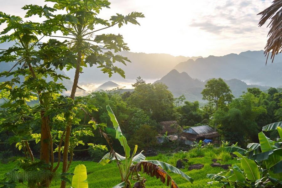 Khu bảo tồn thiên nhiên Pù Luông cách TP Thanh Hóa 130 km về phía Tây Bắc, Hà Nội khoảng 150 km. Đường đến Pù Luông dù đi từ hướng Hà Nội hay Thanh Hóa đều rất dễ đi, ngay cả những đoạn đường đèo.