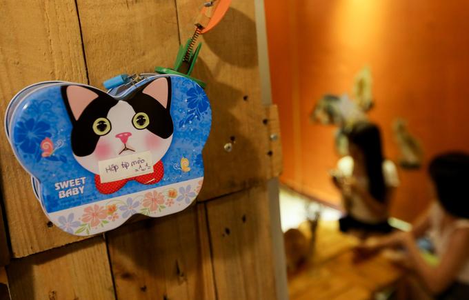 """Khách chơi đùa thoải mái với mèo tuy nhiên, quán hạn chế dùng đèn flash chụp mèo, dặn khách rửa tay trước khi ôm hay không cho ăn thức ăn lạ... Khách cảm thấy hài lòng có thể """"bo"""" cho chú mèo mình yêu thích."""