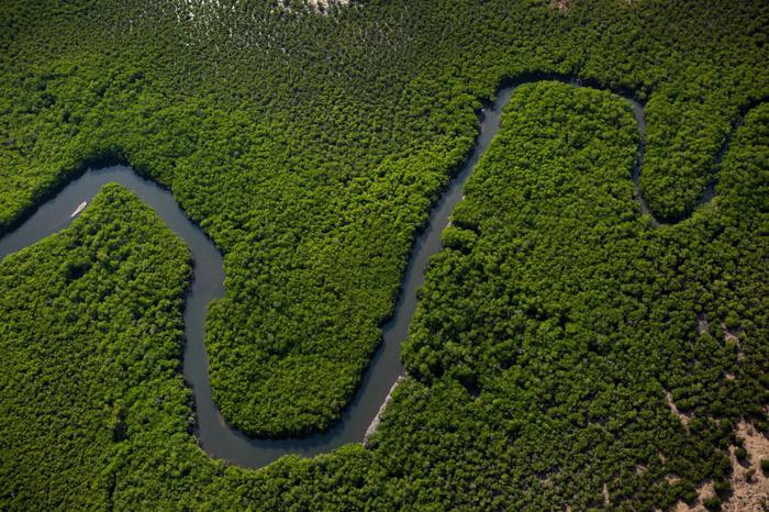 Dòng sông uốn lượn chảy xuyên qua quần đảo Tiwi được chụp từ trực thăng - Ảnh: DAVID MAURICE SMITH, OCULI/NG