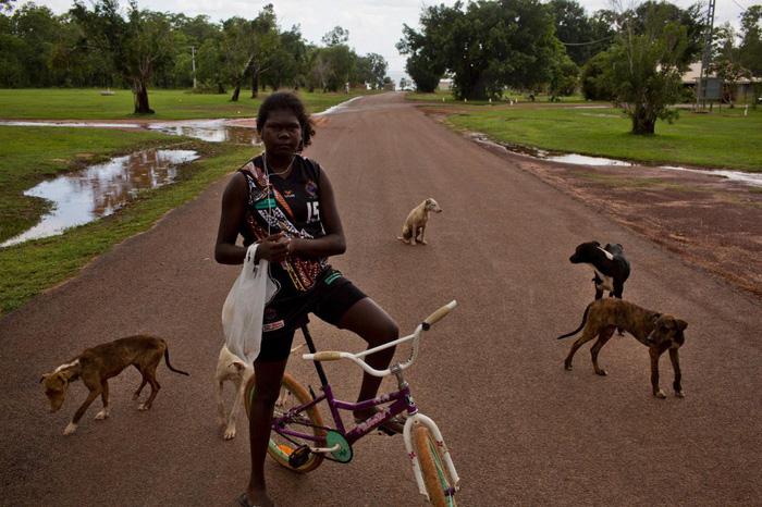Những chú chó vây quanh cô gái trên con đường làng ở Pirlangimpi, đảo Melville - Ảnh: DAVID MAURICE SMITH, OCULI/NG