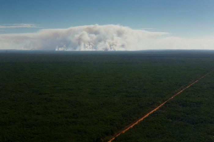 Khói bốc lên cao từ cháy rừng được nhìn từ phía xa - Ảnh: DAVID MAURICE SMITH, OCULI/NG