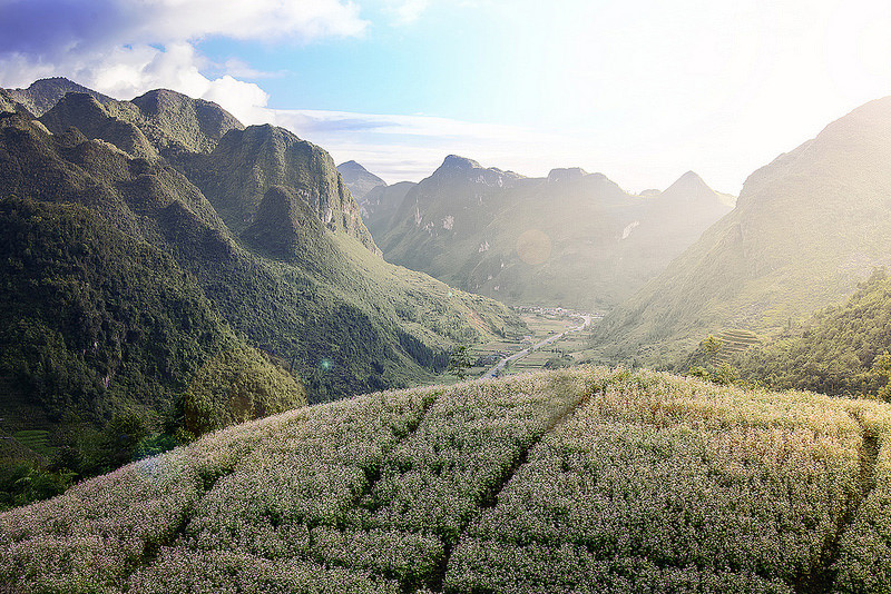 """7. Lũng Cẩm - Sủng Là: Làng văn hóa Lũng Cẩm thuộc xã Sủng Là huyện Đồng Văn. Ở Sủng Là, nơi nổi tiếng với nhiều cảnh quan hùng vĩ, hoang sơ, có những ngôi nhà trình tường, lợp ngói âm dương nằm sát nhau, là nơi ở của 36 hộ dân tộc Mông, dân tộc Hán. Lũng Cẩm được lấy làm bối cảnh chính cho bộ phim """"Chuyện của Pao"""", ngôi làng mang đậm nét văn hóa của dân tộc Mông. Ảnh: Viettravel."""