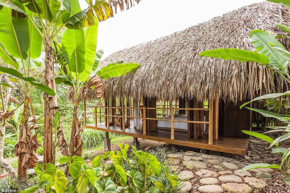 3. Farm Cabana, Armenia, Colombia - được yêu thích 99.622 lần: Căn chòi lãng mạn được xây dựng bằng tre này nằm trong một đồn điền cafe ở Colombia, đây chính là cơ ngơi được mơ ước đến nhiều thứ 3 trên thế giới.